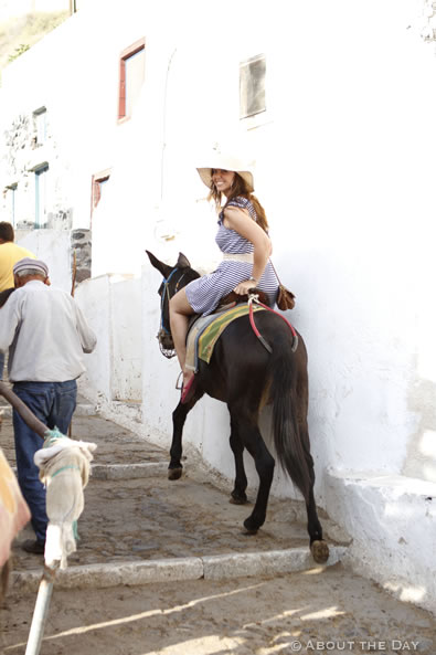 Sonia's mule ride up the mountain in Santorini