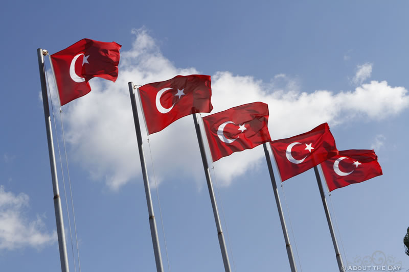 The Turkish flag