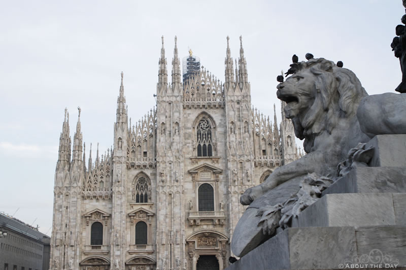 Lion outside the Duomo di Milano cathedral in Milan, Italy