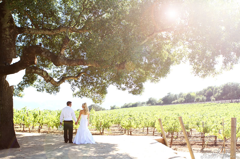 Wedding in Calistoga, California