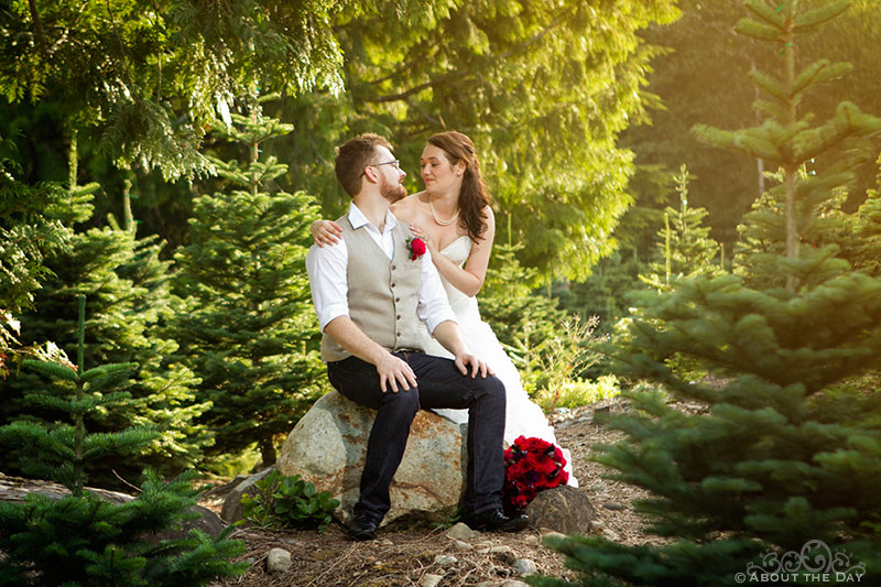 Bride and Groom sit on a rock and kiss at Trinity Tree Farm in Issaquah, Washington