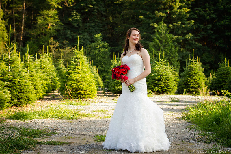 Bride stand in fading light at Trinity Tree Farm in Issaquah, Washington