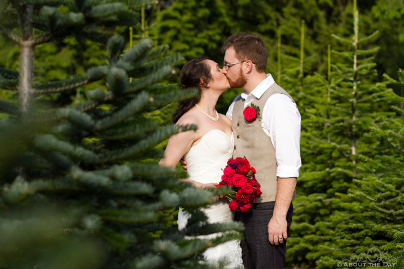 Bride and Groom kiss in the trees at Trinity Tree Farm in Issaquah, Washington