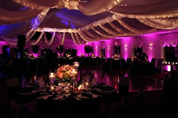 Purple and Gold up-lighting for wedding reception