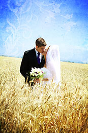 Bride and Groom kiss in a wheat field under blue skies