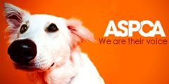 Help support the ASPCA