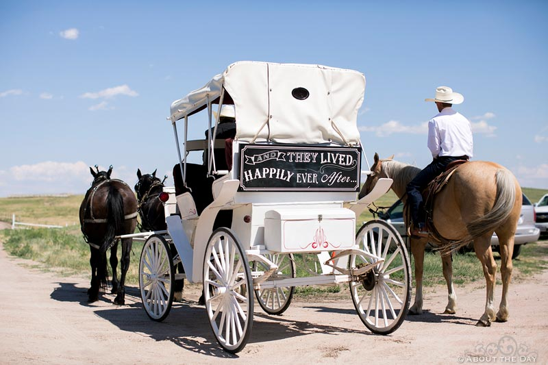 Wedding Carriage waits for Bride at Haythorn Land & Cattle Co