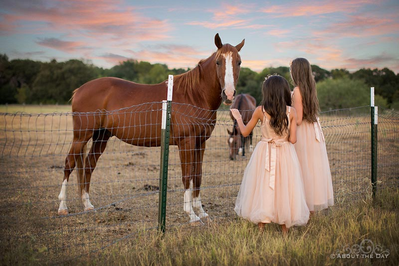 Flowergirls pet the horses at The Emerson